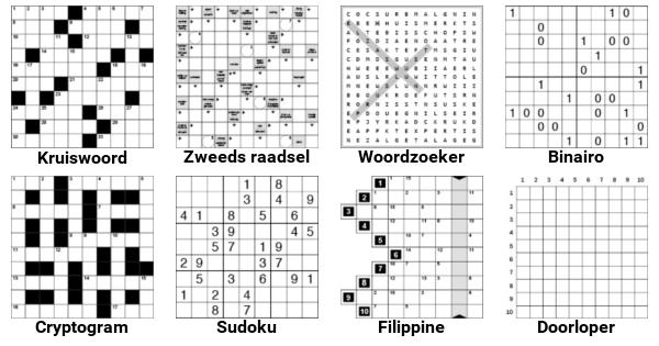 kruiswoordraadsel puzzelboek
